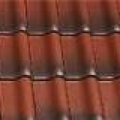 Dachówka holenderska (7)